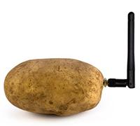 patate-connectée