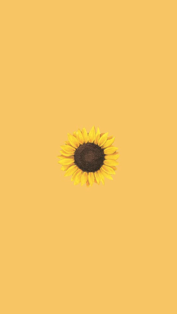 Fond d'écran iPhone sunflower