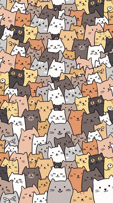 Fonds d'écran chat